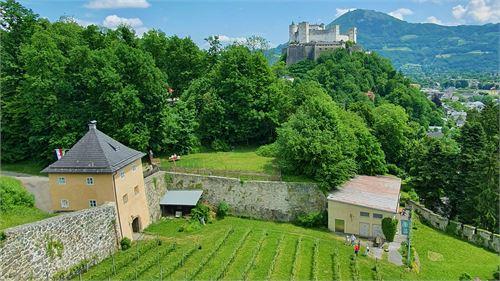 Weinbaumuseum am Mönchsberg mit Festungsblick