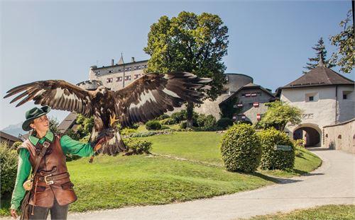 Flugshow auf der Burg Hohenwerfen