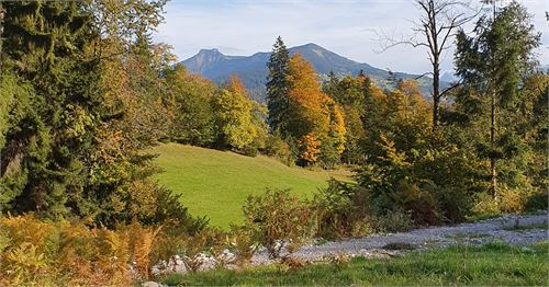 Ausblick von der Hubertuskapelle auf der Schönalm