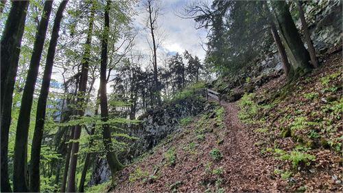 Wanderweg von Stein an der Wand nach Hochstadl
