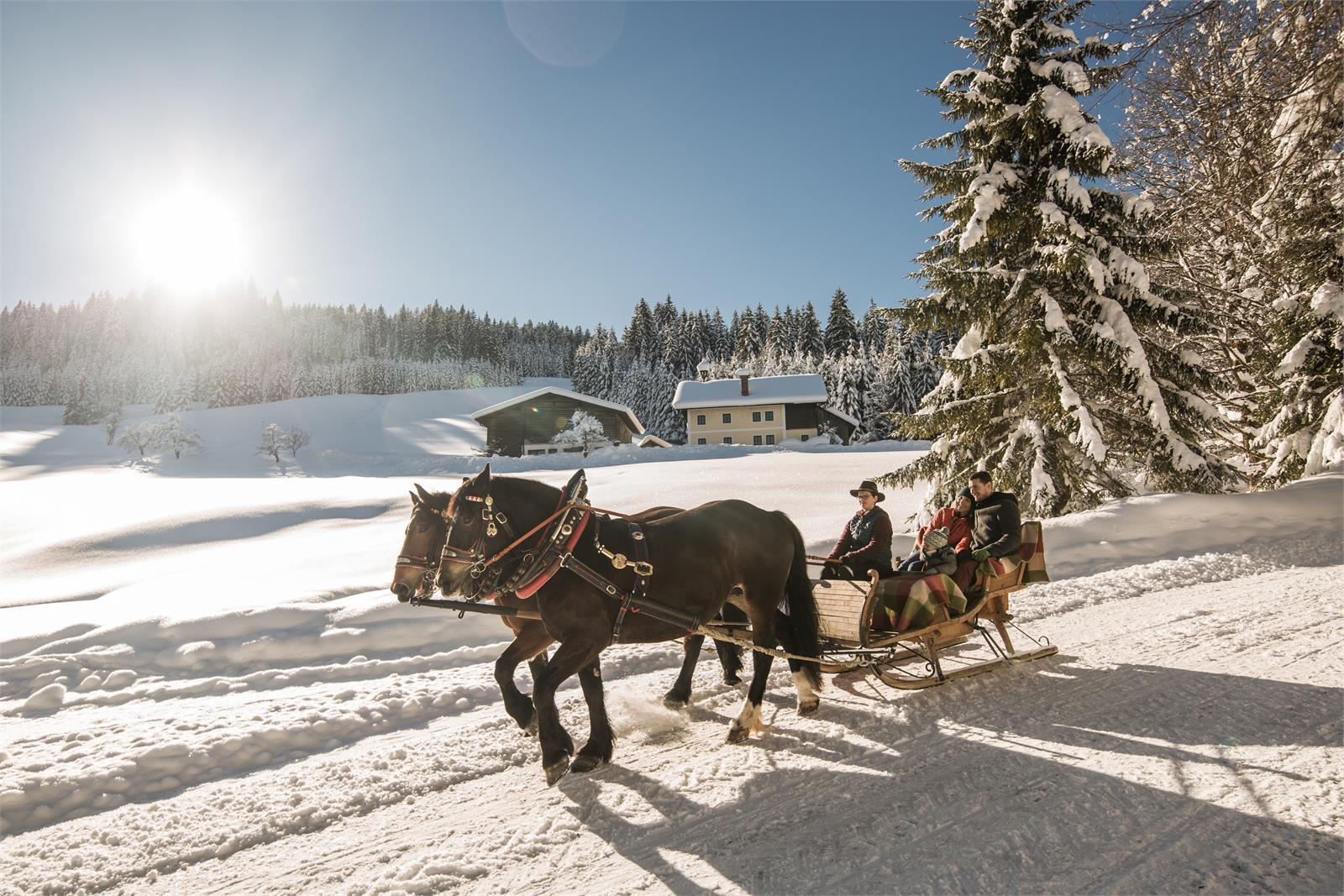 Pferdekutschenfahrt im Salzburger Land   ©SLT - Michael Groessinger