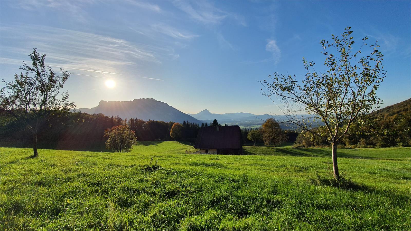Untersbergblick von Hochstadl in St. Jakob am Thurn | ©TVB Puch