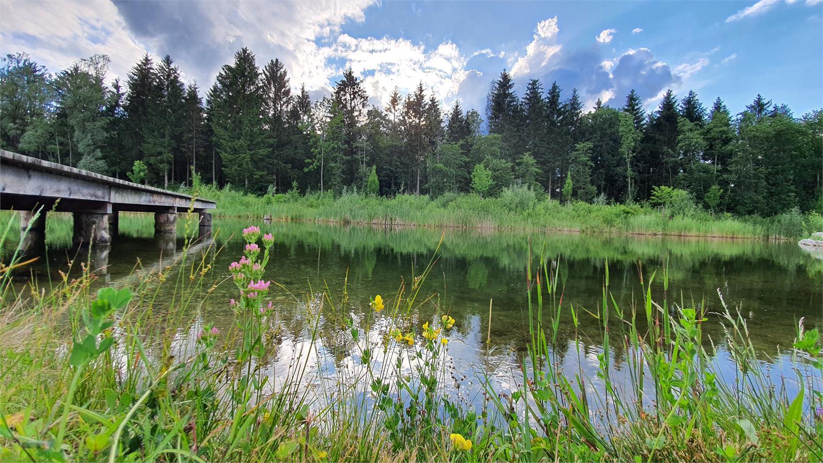 Freizeitanlage in Puch bei Salzburg | ©TVB Puch