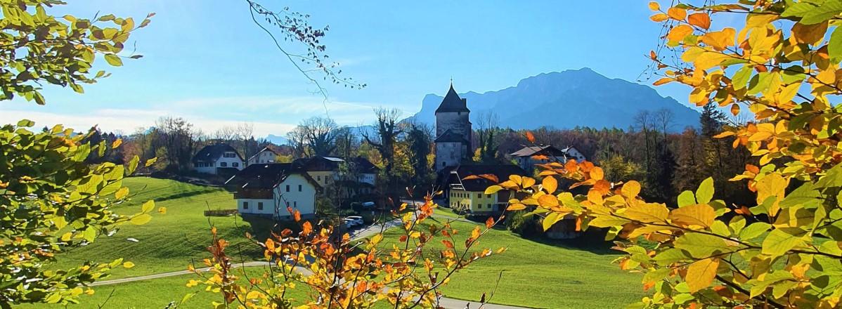 Herbstwanderung in St. Jakob am Thurn © TVB Puch - Gerber