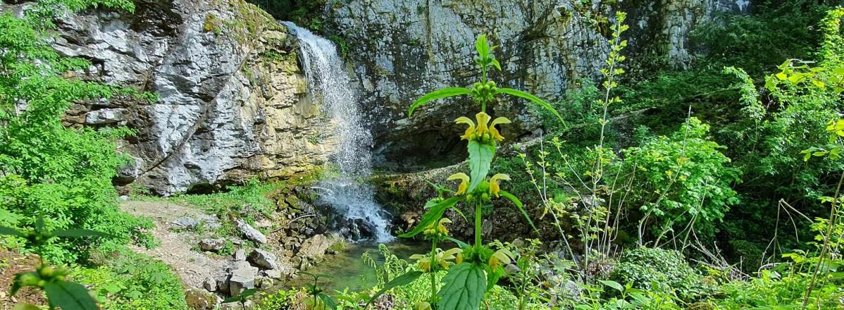 Wasserfall © TVB Puch